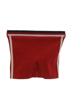 1950's Mens Mod Stretch Swim Shorts
