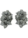 Womens Accessories - Clip Earrings