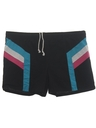 Mens Rainbow Swim Shorts