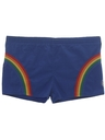 Mens Mens Rainbow Swim Shorts