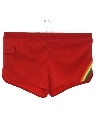 Mens Rainbow Swim Shorts